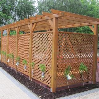 Pergola ogrodowa drewniana