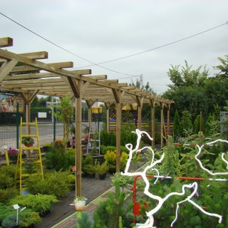 Pergola, cieniówka na rośliny w centrum ogrodniczym